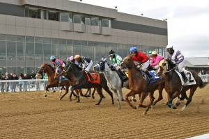 Hollywood Mahoning Valley Thoroughbred Racing with Community R.5HPT Loudspeakers - Courtesy Conrad Photo